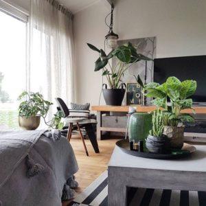 kwaliteit gordijnen vitrage en overgordijnen vraag het aan Protectsun in Amsterdam